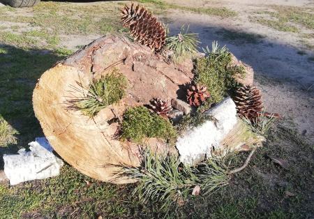 Małgosia-Rosińska-sadzenie-szyszki-small