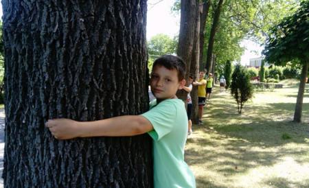 Happening - Ratujmy stare drzewa